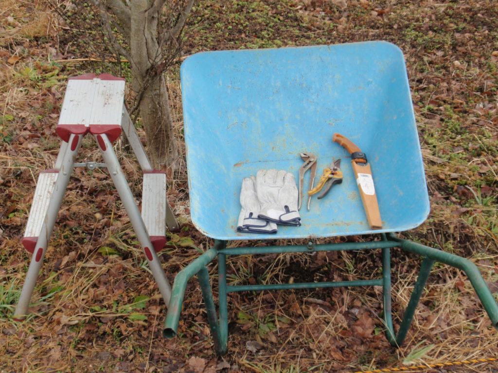 山椒の木の剪定に必要な道具