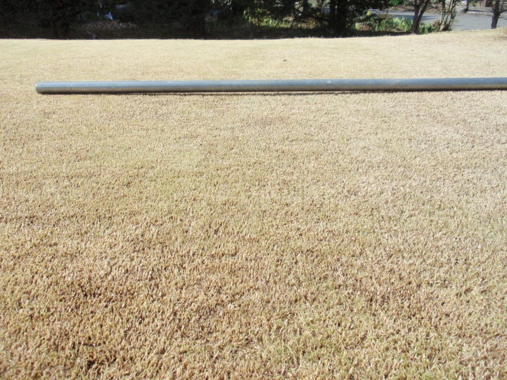 芝生の凹凸を見る 不陸整備