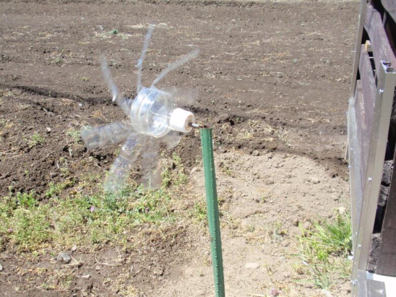 モグラ除けペットボトル風車