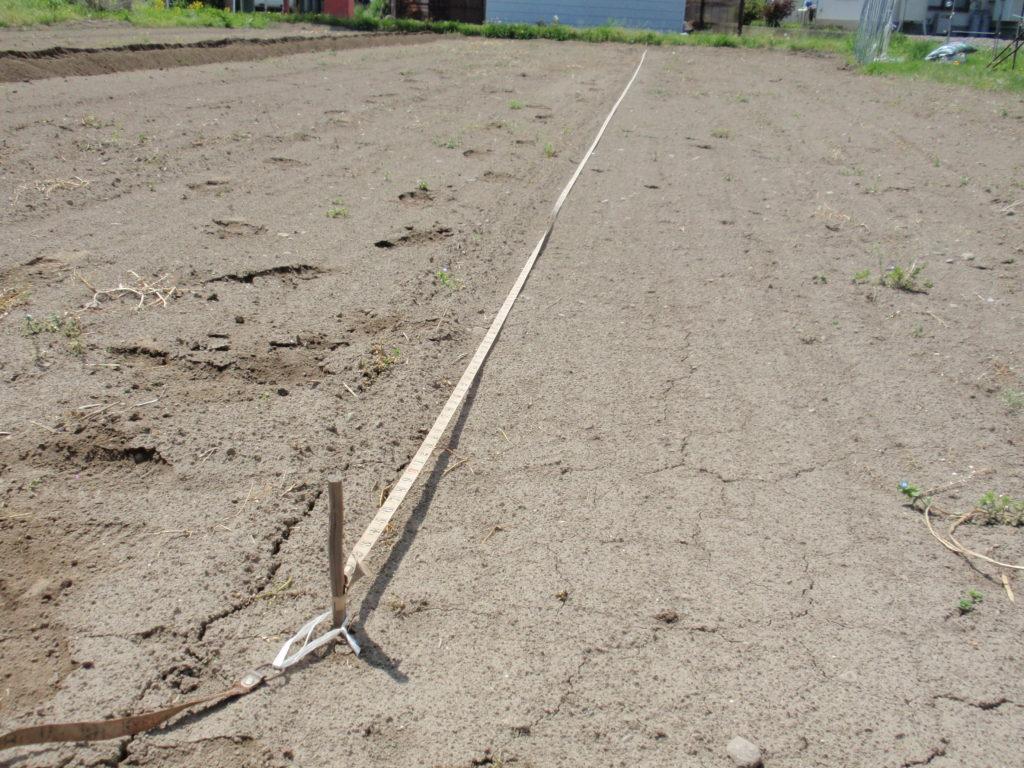 畝を真っすぐ作る為に線を引く 長い距離