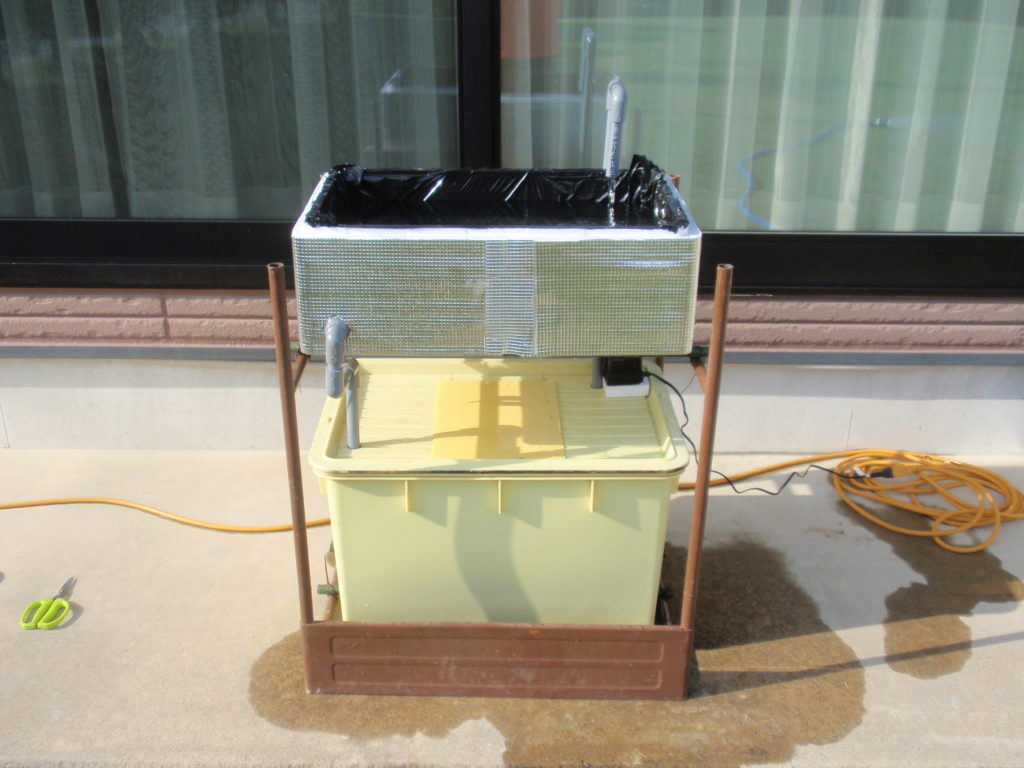 循環式水耕栽培装置試運転